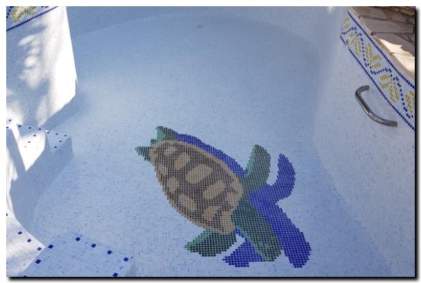 R novation piscine marseille estaque for Piscine marseille